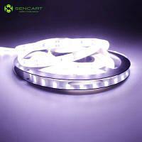 SENCART 300 х SMD-5050 из светодиодов Водонепроницаемый холодный белый свет светодиодные полосы света Главная партия Естественный белый свет