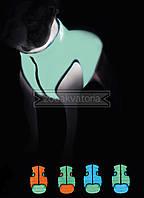 Одежда для собак Airy Vest Lumi S 35, куртка, жилет салатово-голубой светящийся