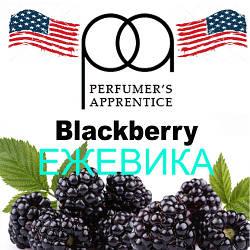Ароматизатор Blackberry Flavor (TPA/ТПА) – Ежевика