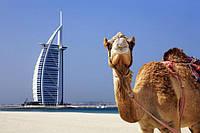 Самые интересные новости туризма Дубая за декабрь 2017- январь2018