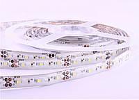 LED лента Premium SMD2835, 120шт/м, 8.4W/m, IP65, фото 1