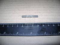 Ролик КПП (покупной МТЗ) (арт. 4х34,8 А3)