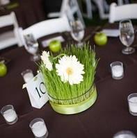 Цветочные композиции на столы, украшение зала тканями, оформление шарами