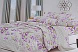 Двуспальный набор постельного белья с красивым рисунком Цвет ― На фото Размер : ―, фото 9
