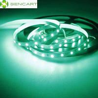 5 метров х 60-СМД-2835 светодиодов 1500lm белизна Убавиться Слипчивая Зеленая светодиодная лента (30 Вт DC 12 В) Зелёный