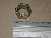 Гайка М20х 1.5-5Н6Н  корончатая (производство Кр.Этна)