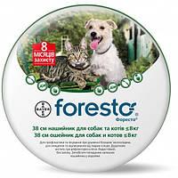 Ошейник от блох и клещей для небольших собак и кошек Bayеr Forеsto - 38 см