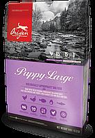Сухой корм Orijen Puppy Large Breed 11.4кг + Поводок-контроллер в подарок