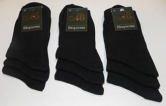 Носки мужские демисезонные полоска ТМ Прилуки, фото 2