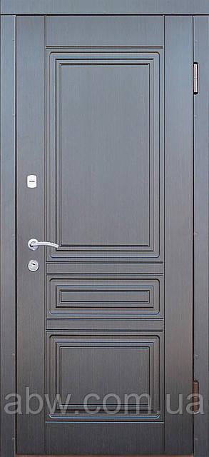 """Двери """"Портала"""" - модель Рубин"""