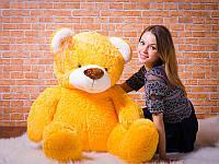 Желтый медведь - подарок для девушки