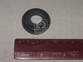 Манжета штока цилиндра силового (покупной ГАЗ) (арт. 66-01-3405215)