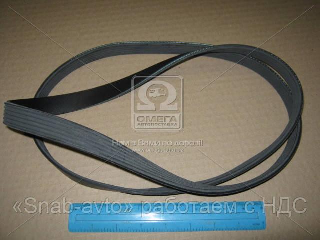 Ремень поликлиновый 6PK1520 (производство DONGIL) (арт. 6PK1520), ABHZX
