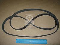 Ремень поликлиновый 6PK1850 (производство DONGIL) (арт. 6PK1850), ABHZX