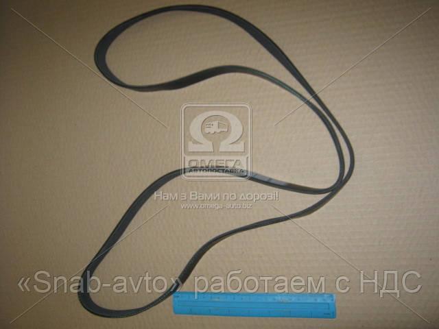Ремень поликлиновый 6PK1745 (производство DONGIL) (арт. 6PK1745), ABHZX