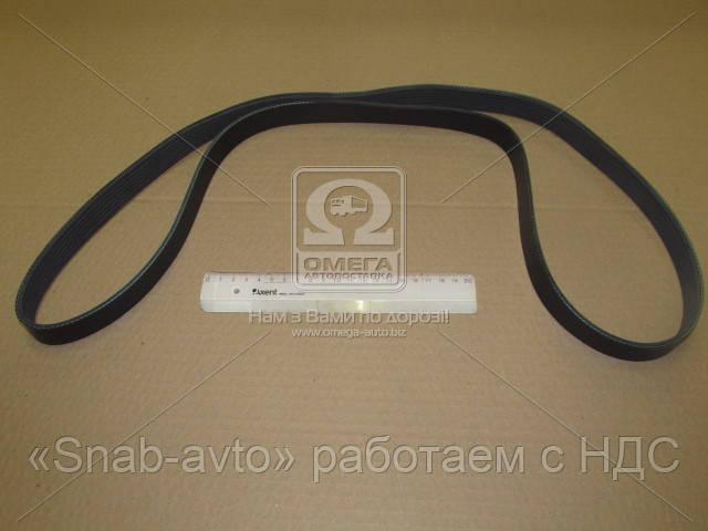 Ремень поликлиновый 7PK1550 (производство DONGIL) (арт. 7PK1550), ABHZX