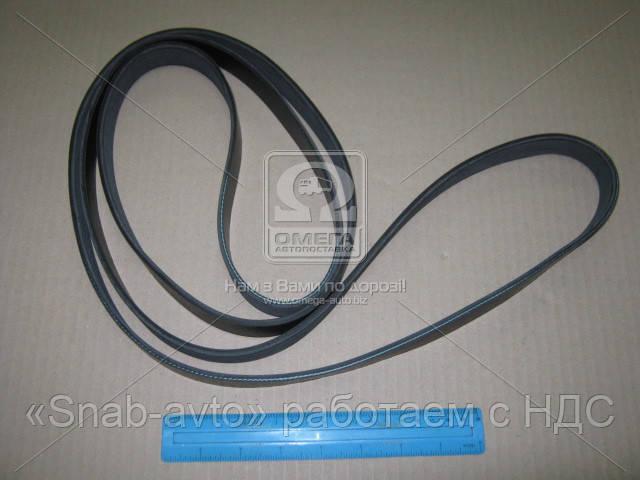 Ремень поликлиновый 7PK2470 (производство DONGIL) (арт. 7PK2470), ACHZX
