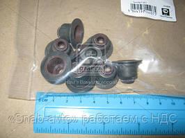Сальник клапана (Производство PAYEN) HR809, ACHZX