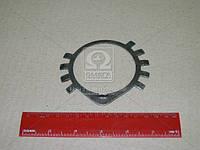 Шайба замковая переднего противовеса коленчатого вала (Производство ЯМЗ) 236-1005056-А