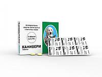 Антигельминтный препарат широкого спектра действия для собак и кошек Каниверм, минимальный заказ 5 шт