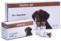 Вакцина живая сухая против чумы плотоядных и парвовирусного энтерита без растворителя для собак Нобивак Puppy