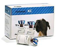 Вакцина живая сухая против бордетеллеза и парагриппа собак Нобивак КС