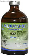 Противовоспалительный препарат для собак и кошек Мелоксивет 100мл