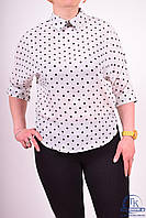 Блуза женская шифоновая Lily Lin 556 Размер:46,48