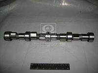 Вал распределительный ВАЗ 21213 (Производство АвтоВАЗ) 21213-100601000, AEHZX