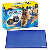 Инновационный охлаждающий коврик для питомца Polar Pooch