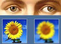 Сбор при ослаблении зрения 50 гр.
