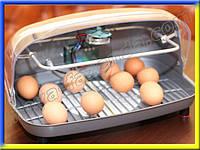 Универсальный инкубатор из пластика 36 яиц