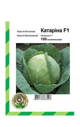 Семена капусты Катарина F1 100 семян (Бейо / Bejo/ Агропак+) — ранняя (54 дня), белокочанная., фото 2