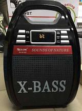 Колонка GOLON RX-810 MP3,Bluetooth, радіомікрофон, пульт, світломузика