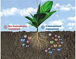 Системы питания для растений