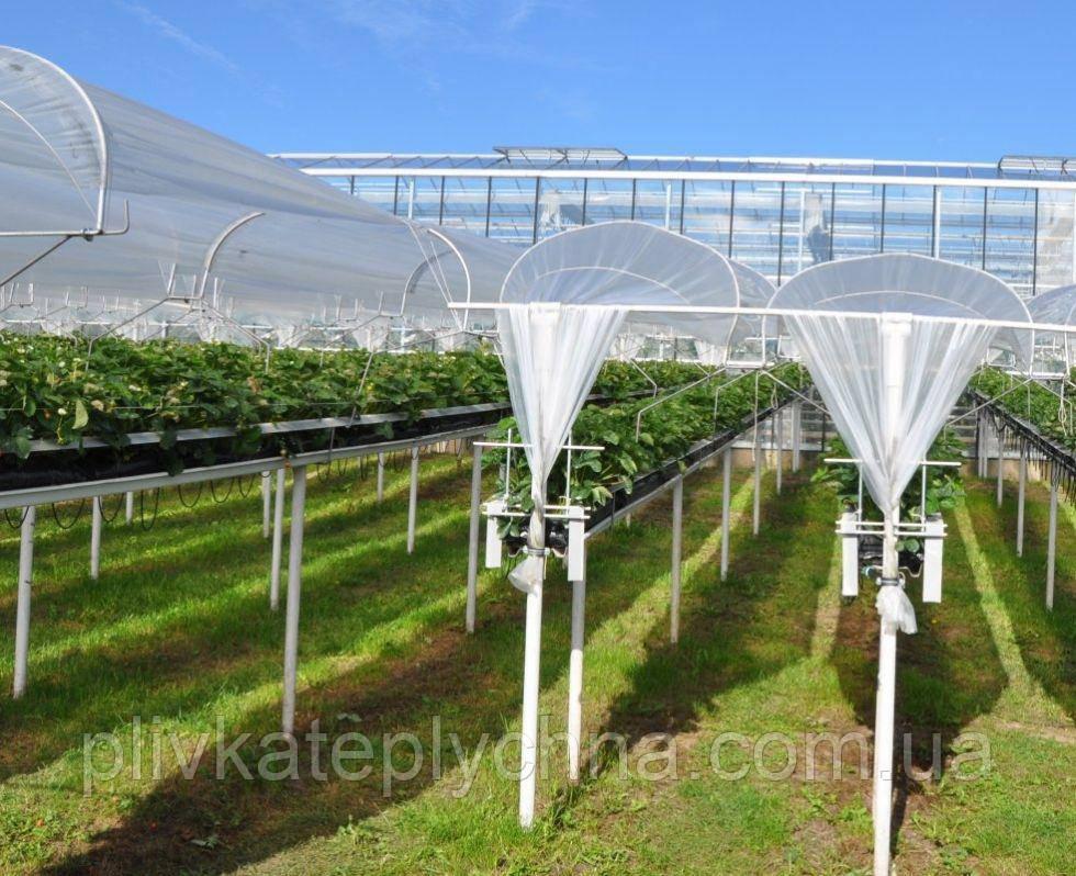 Плівка «на дашки» 125 мкм. Плівка запроектована для вирощування м'яких фруктів KRITIFIL® 2495 4-6