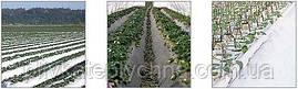Плівка для мульчування грецького виробництва KRITIFIL® 6533 біла Преміум