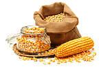 Схема живлення кукурудзи