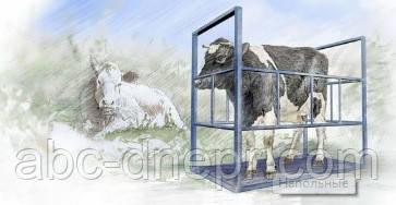 Весы для животных индивидуальные