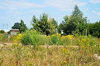 Продажа земельного участка 13 соток,село Малая Александровка ., фото 1