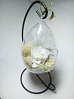 Стабилизированный мох и роза в стеклянной подвесной капле