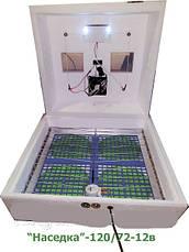Инкубатор Наседка ИБ-120/72, 12 вольт автоматический переворот, цифровой терморегулятор, фото 3
