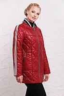 Женская демисезонная куртка в больших размерах с капюшоном и на молнии  2025453