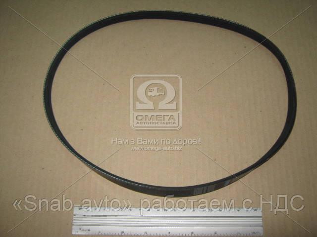 Ремень поликлиновый 4PK865 (производство DONGIL) (арт. 4PK865), AAHZX