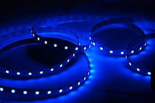 Подсветка диодная PVC силикон 120см синяя.