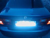Подсветка номера неоновая синяя