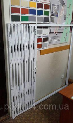 Раздвижные решетки с откидным порогом КИЕВ, фото 2