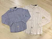 Рубашки на мальчика оптом, Buddy Boy, 4-12 лет,  № YY-2728