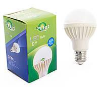 Светодиодная лампа Led или лед лампочка, купить энергосберегающию диодную лампу QGT 9W 6000K 220V E27 (780), фото 1