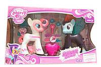 Пони Май литл пони с аксессуарами, в коробке